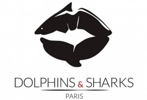 logo dolphins & sharks